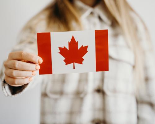 Kanada Deneyimi - Kanada Geyikleri